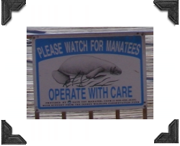warning sign on marina gate, watch for manatees